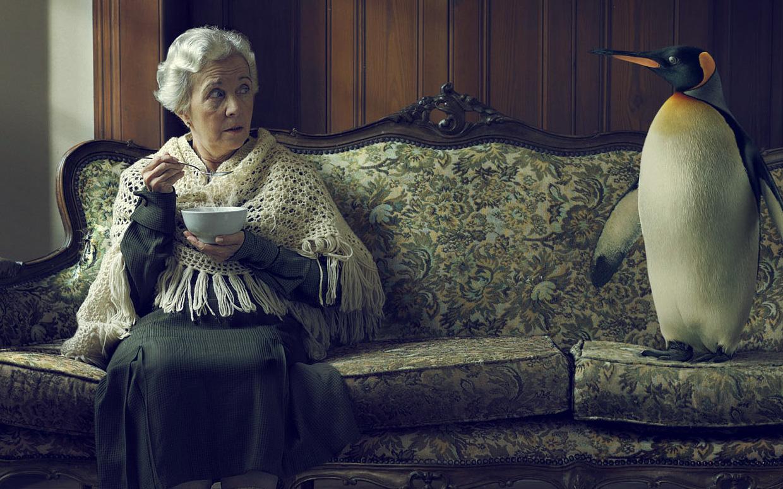 Potrzeby osób starszych